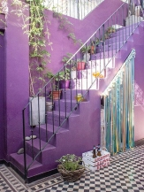 Radiant_Orchid_30