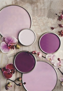 Radiant_Orchid_36