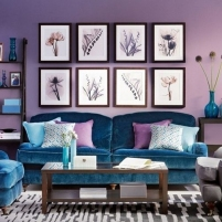 Radiant_Orchid_5