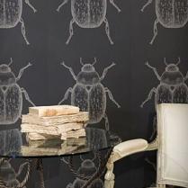 Escarabajos_2
