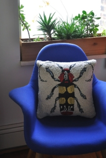 Escarabajos_9