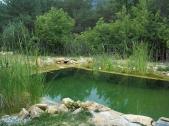 Piscinas_ecologicas_7