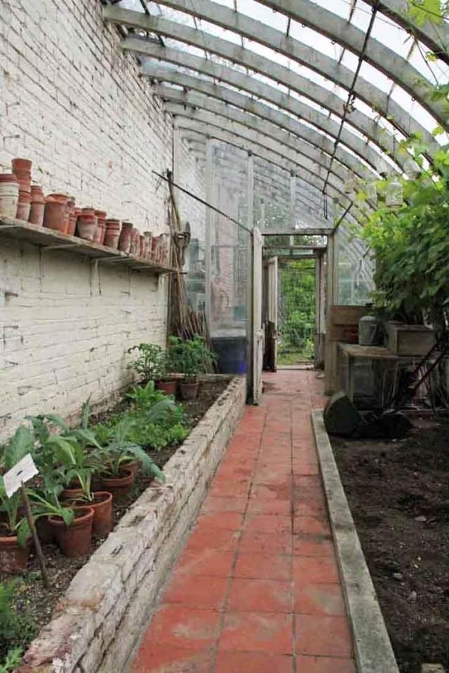 Greenhouse_11