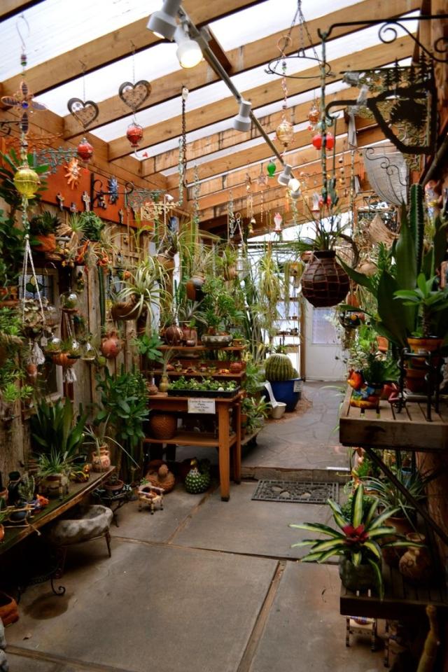 Greenhouse_13