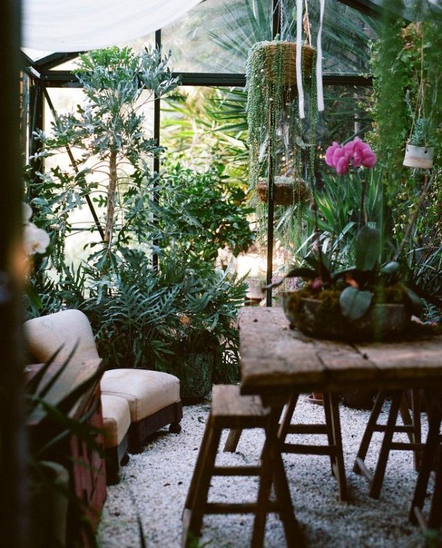 Greenhouse_17