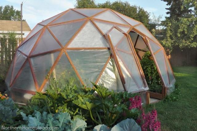 Greenhouse_20