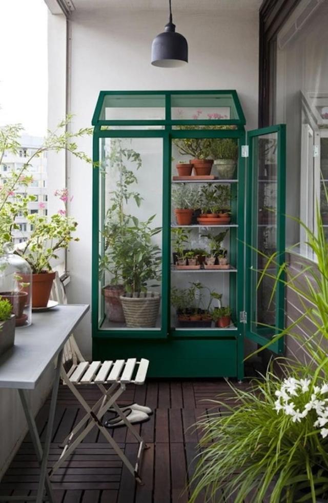 Greenhouse_23