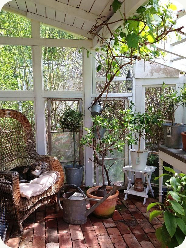 Greenhouse_6