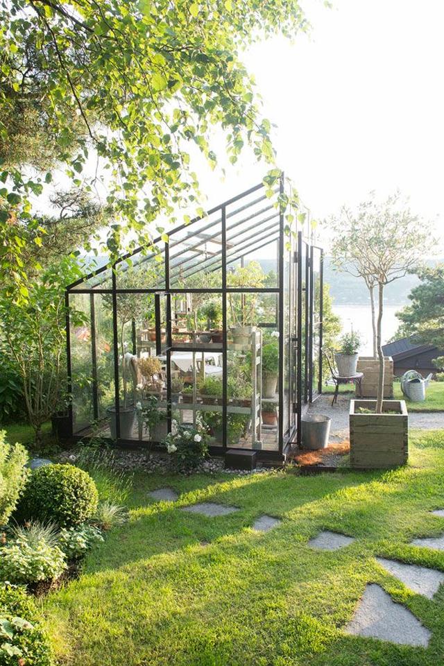 Greenhouse_9