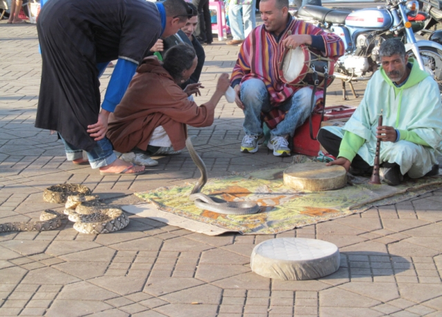 Marrakech_42