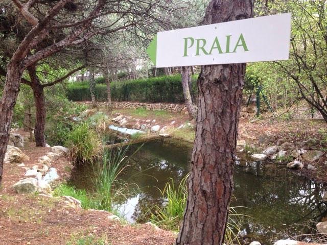 Praia_Verde_19