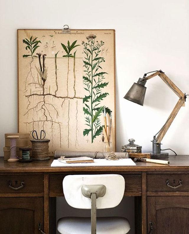 Botanical_12