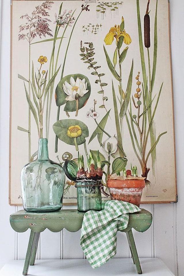 Botanical_16