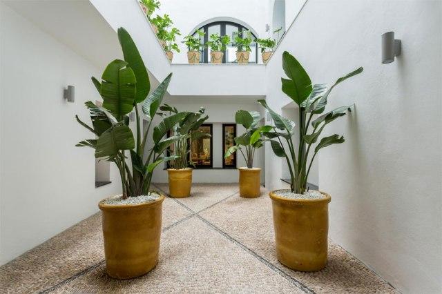 Room_Mate_Valeria_Málaga_1
