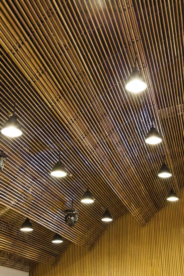 Ceilings_7