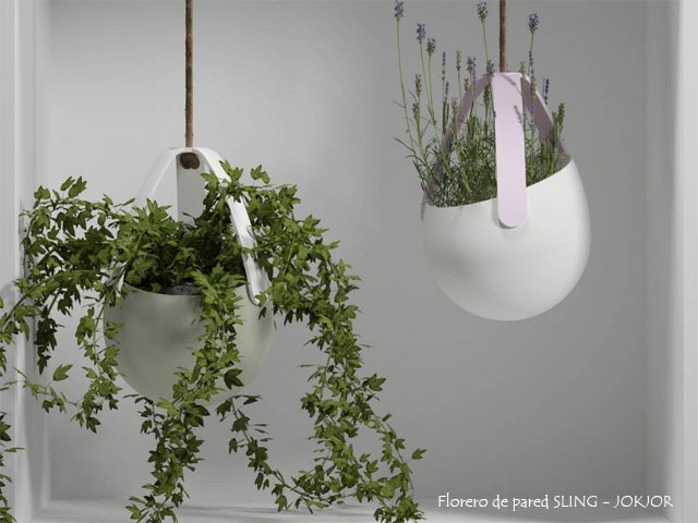 Plants_3