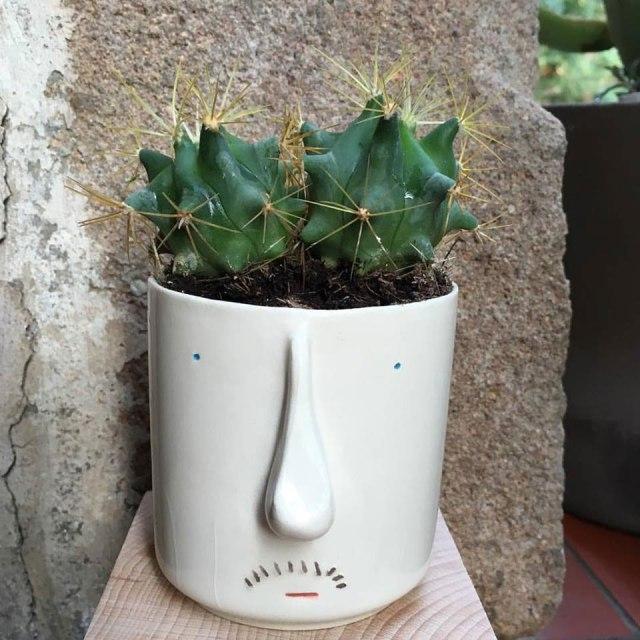 pompilio_plants_14
