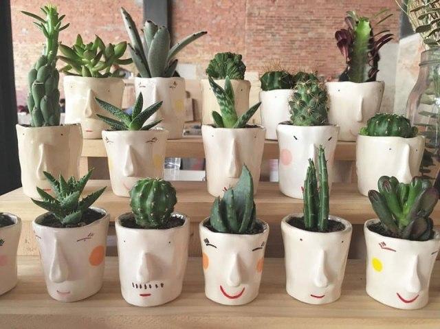 pompilio_plants_7