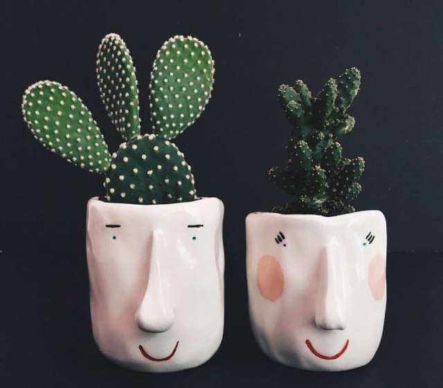 pompilio_plants_8